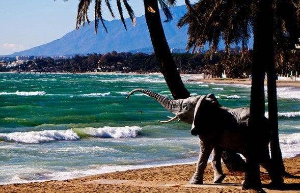 Elephantendusche Marbella
