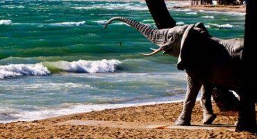 Reisetipps für Sommerferien: Wohin mit wem?