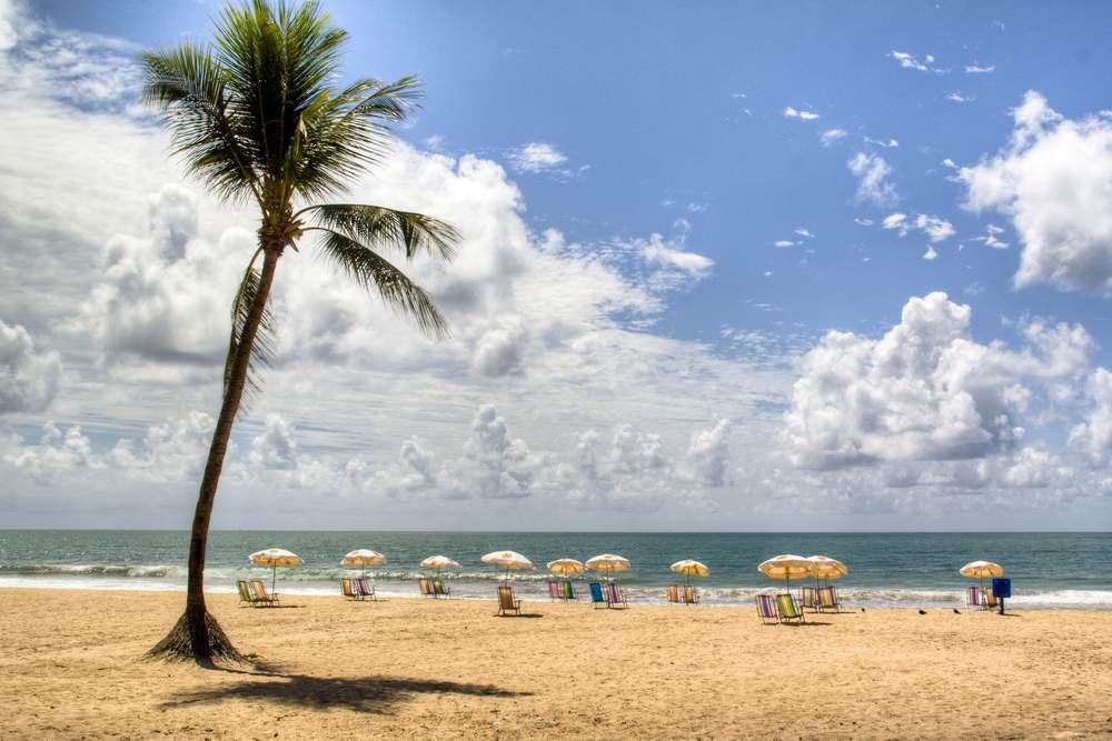 Brasilien Reisetipps, Recife, Strand, Palmen, Atlantikküste