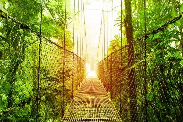 Nachhaltig und umweltfreundlich Reisen