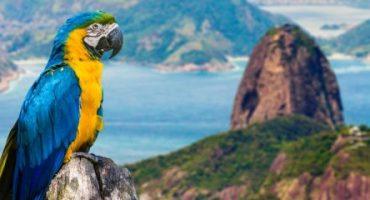 Die Dos und Don'ts in Rio de Janeiro