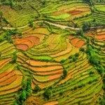 Wissenswertes-über-Nepal