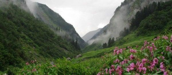 Der große Himalaya-Nationalpark © www.greathimalayannationalpark.com