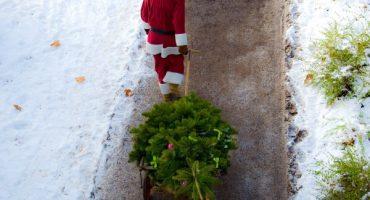 Kostenfreie Weihnachtsbaum-Mitnahme bei Airlines