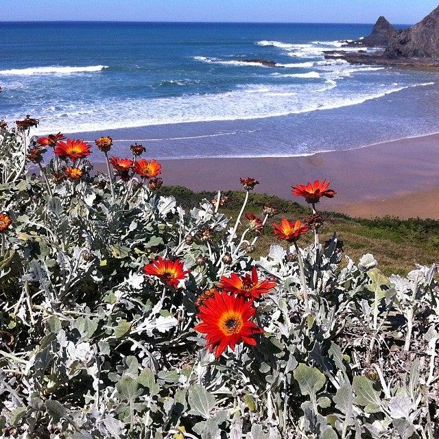 Praia de Odeceixe, strand, küste, atlantik, portugal, die schönsten strände portugals