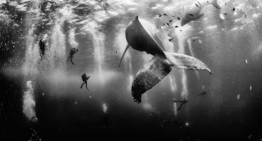 Die besten Reisebilder 2015 – National Geographic Traveler Photo Contest