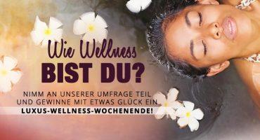 Wie Wellness bist Du?