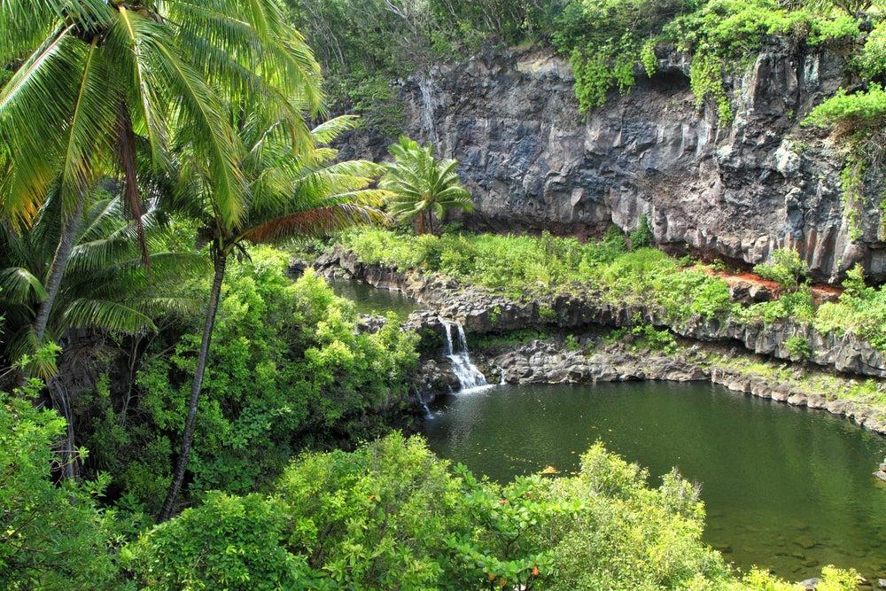 Die Pools of Oheo in der Oheo Gulch an den Hängen des Haleakalā.