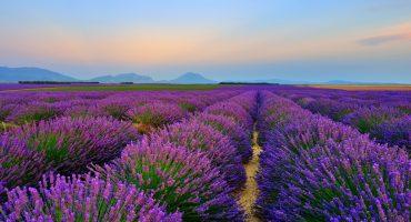Wellness aus der Provence