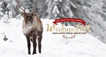 Opodo Weihnachtsaktion – Mach etwas anderes dieses Weihnachten & gewinne einen 700€-Gutschein