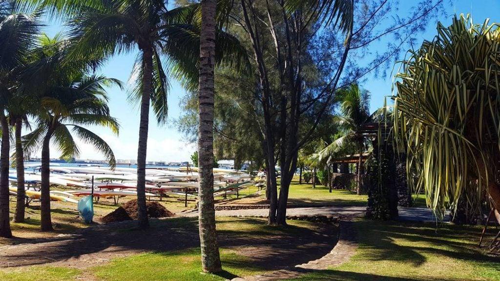 was kann man auf tahiti machen, paofi gardens
