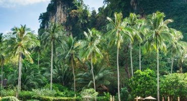 Die schönsten Krabi, Thailand, Bilder auf Instagram