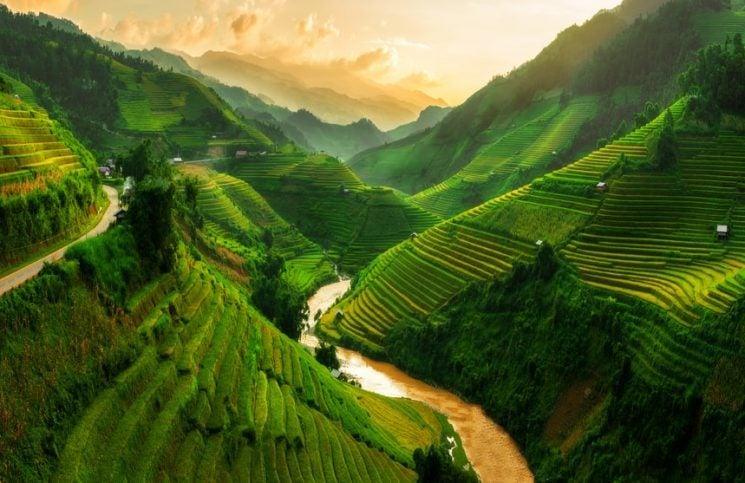 Reisen in Vietnam, Urlaub in Vietnam, Reisterassen Vietnam
