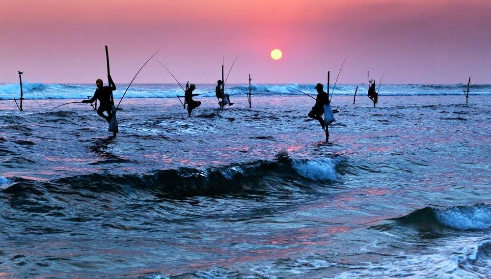 Sri Lanka - Opodo Reiseblog (3)
