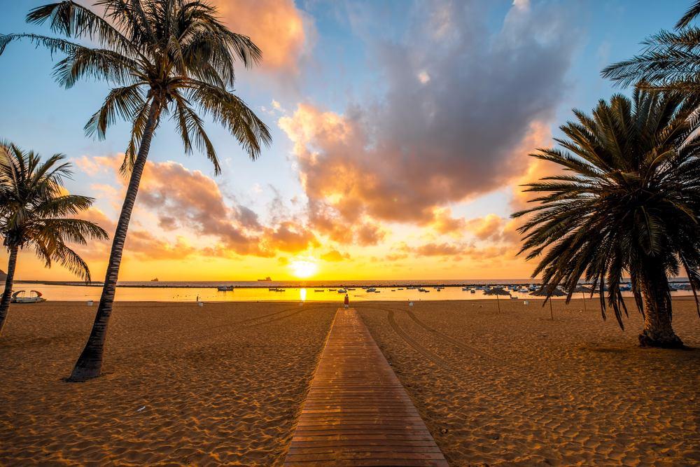 teneriffa, strand, palmen, sonnenuntergang