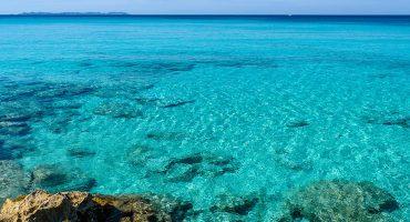 Campos: Das Paradies auf Mallorca