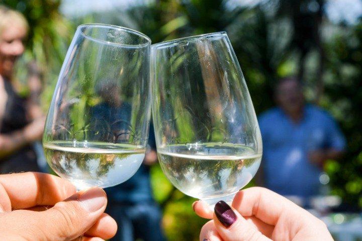 weingläser, vinho verde route, portugal, weinlese