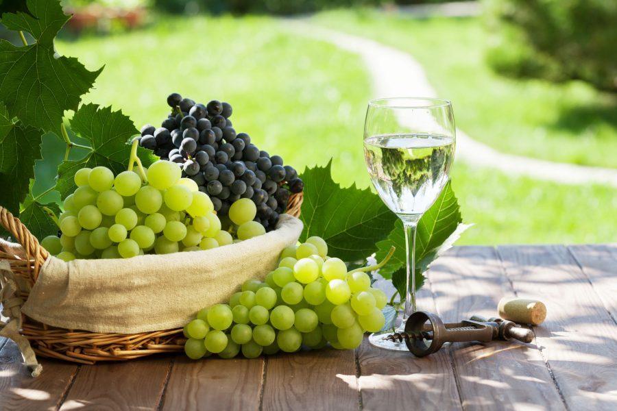 vinho verde, weintrauben, weinglas, korkenzieher, vinho verde route