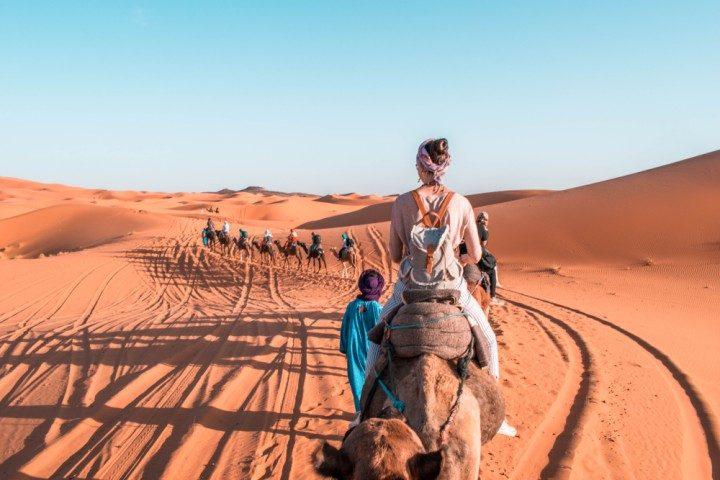 Marokko, Wüste, Sahara, Kamel