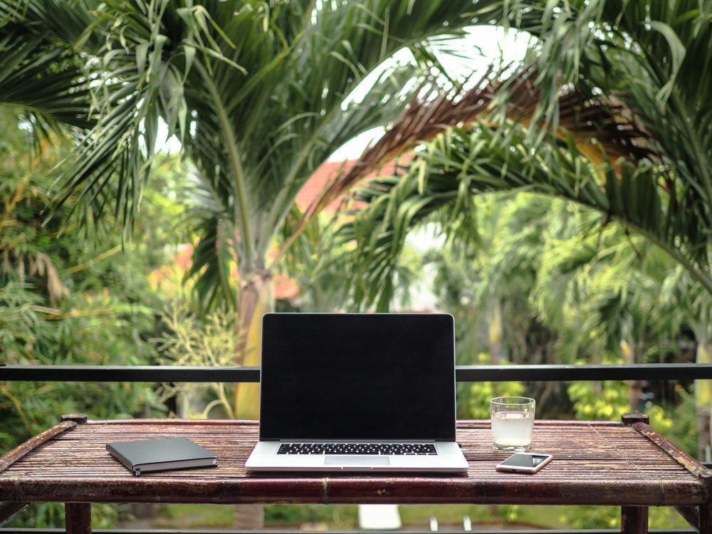 laptop vor palmen, digital nomad, digitale nomaden, work and travel, remote work, home office auf reisen